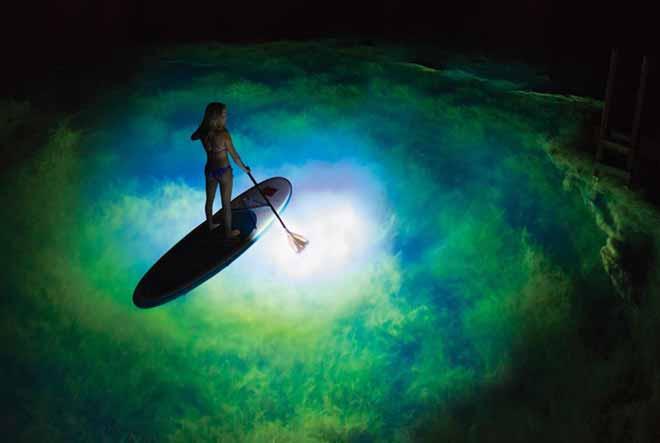 Night LED SUP Paddle